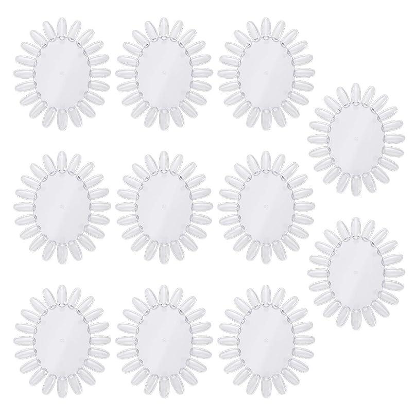 アレルギー請うラダFrcolor 10個アクリルネイルアートプラクティスホイールポリッシュカラーディスプレイチャートネイルカラーパレット(透明)