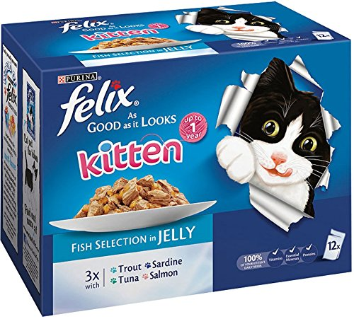 Felix Good As It Looks Gatito Fish Selección en gelatina 12 x 100 g (4 unidades a granel) 4800 g