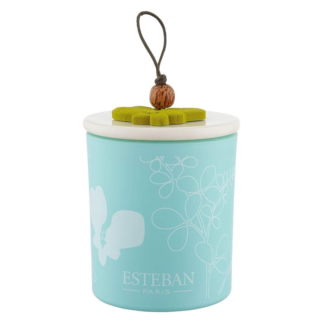 スケッチり宙返り[Esteban ] エステバンは、装飾されたキャンドル170グラムを香りOrchidee - Esteban Orchid?e Scented Decorated Candle 170g [並行輸入品]