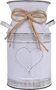 IDoall 19,1cm alto vaso decorativo con design unico a forma di cuore e corda, finitura zincata da rustico decorato per soggiorno, camera da letto, cucina Evelina