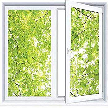 3D Static Clings Window Films Frosted Leaves,Fresh Summer Branches Leaves of A Tree Epic View from The Ground Growth Botanical Picture,Green 23.6 x78.7  Window Film Privacy one Way