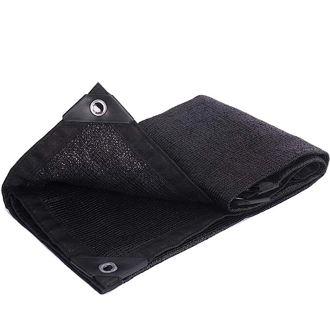 櫛オーバーランいっぱいバイザー布 黒 90% シェーディング率 エッジパンチ 屋外の パティオ ルーフ 遮光ネット 20サイズ ラブカンパニー EE (Color : Black, Size : 2x3m)