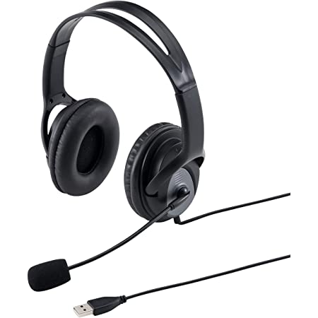 サンワサプライ ヘッドセット USB A接続 大型ソフトイヤーパッド 無(全)指向性 ブラック MM-HSUSB17BK