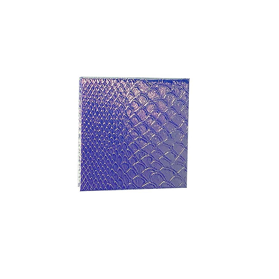 ヒゲ黙バス空の化粧アイシャドーパレット磁気空パレット接着剤空のパレット金属ステッカー空のパレットキット(S)