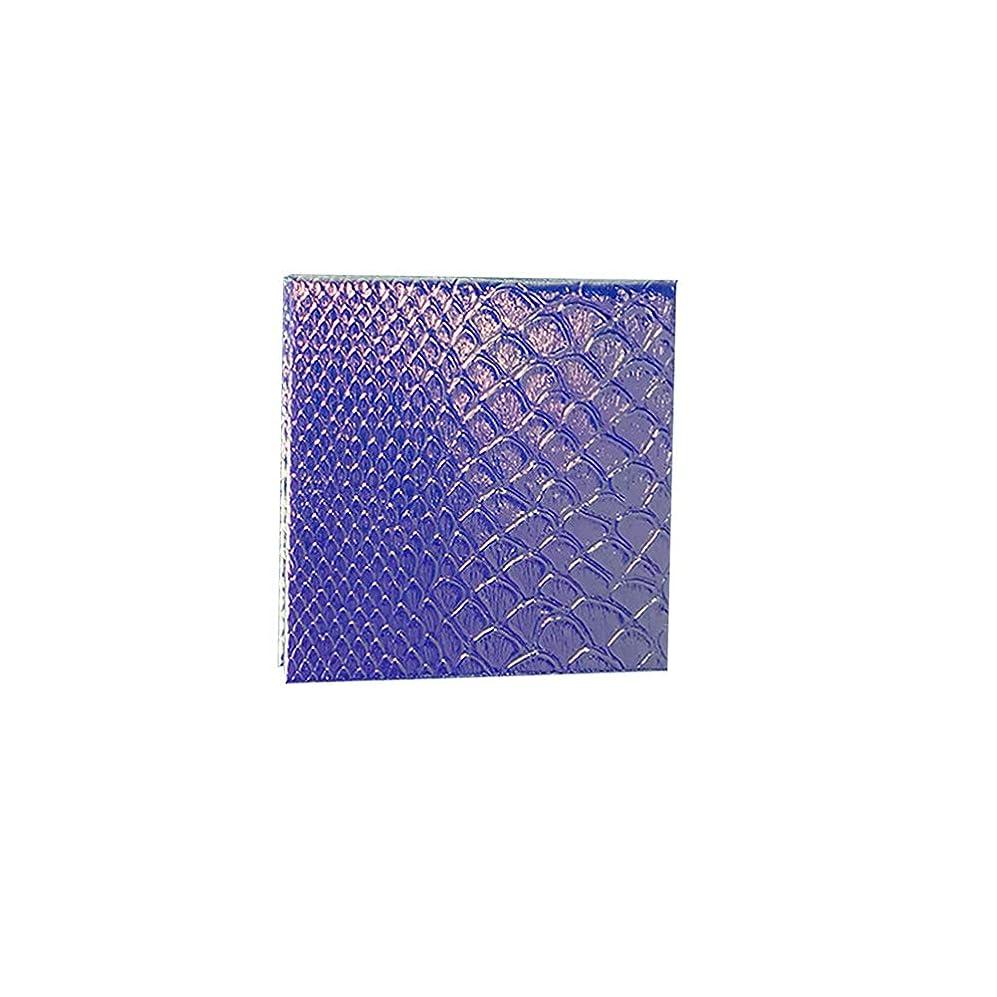 高尚な規制するアラスカ空の化粧アイシャドーパレット磁気空パレット接着剤空のパレット金属ステッカー空のパレットキット(S)