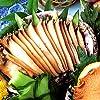 山梨 あわび 煮貝 ギフト 甲州名産あわびの煮貝、高級贈答品鮑、老舗かいやのアワビの煮貝4粒