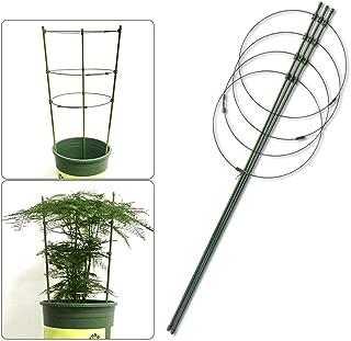 Amazon.es: 20 - 50 EUR - Soportes para plantas / Huertos urbanos y ...