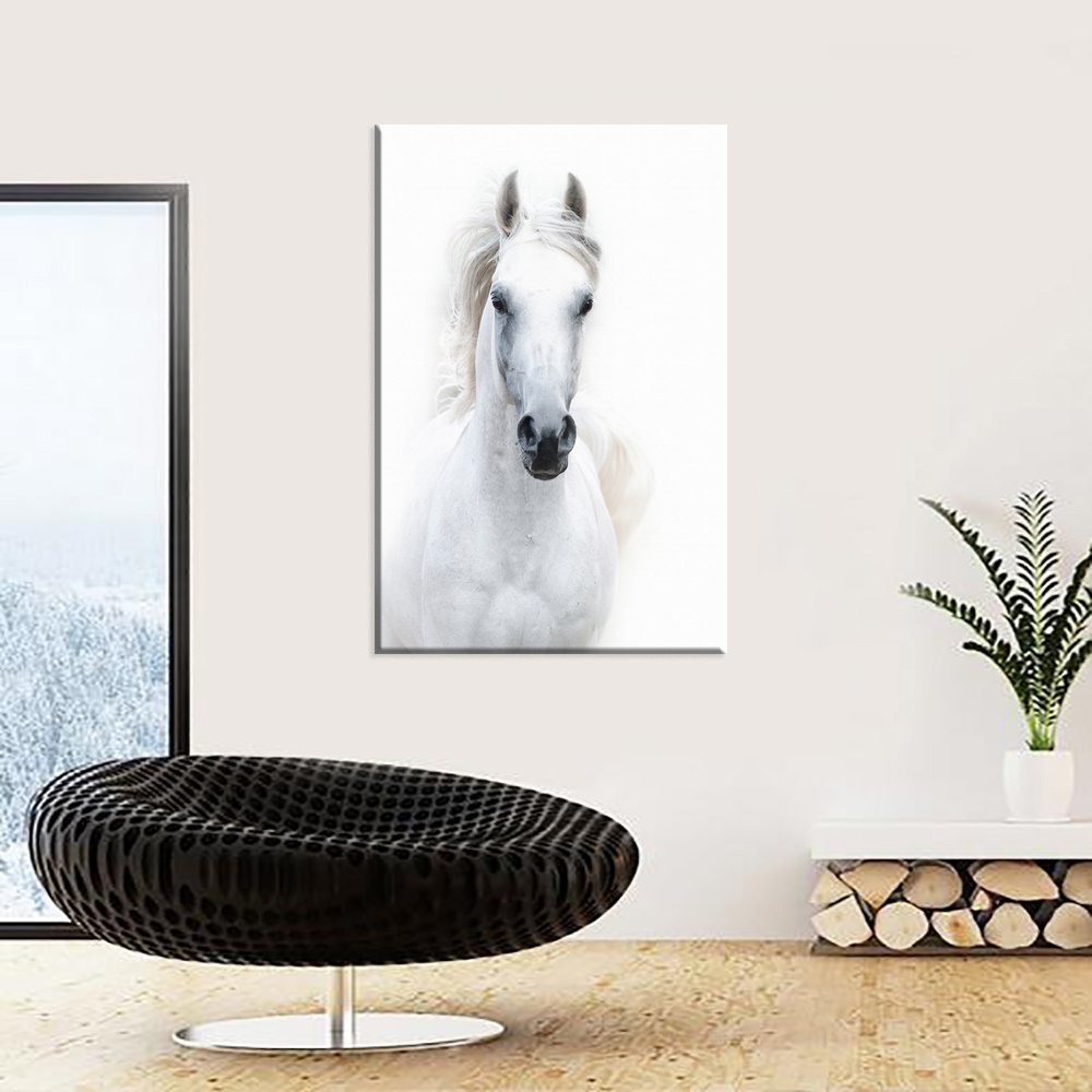 White Horse Art Print Home Decor Wall Art Poster C