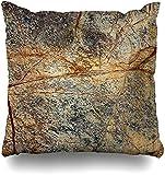 JONINOT Doble Cojines Fundas 18' Granito marrón Mármol Naturaleza Piedra Ágata Geología Roca Funda de Almohada Suave para la Piel
