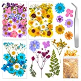 93 Pieces Real Dried Flowers Leaves Kit Mixed Multiple Natural Dried Pressed Flowers with Gold Foil Flakes and Tweezers for Resin Scrapbooking DIY Candle Decoration Resin Jewelry Crafts Making
