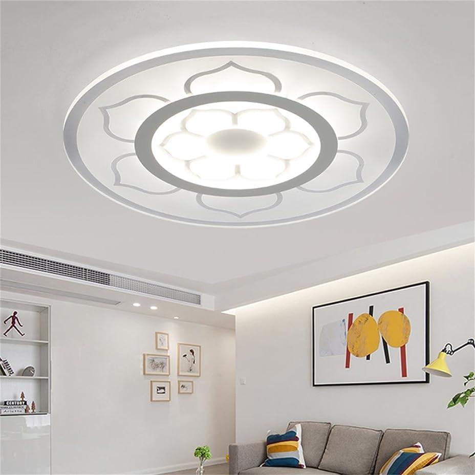 汚染されたジーンズ手がかりYSYYSH 超薄型のLedシーリングランプモダンなリビングルーム快適なベッドルームランプ子供の勉強ランプレストラン60 cm 3色は自由に変換することができます 寝室の装飾ライト