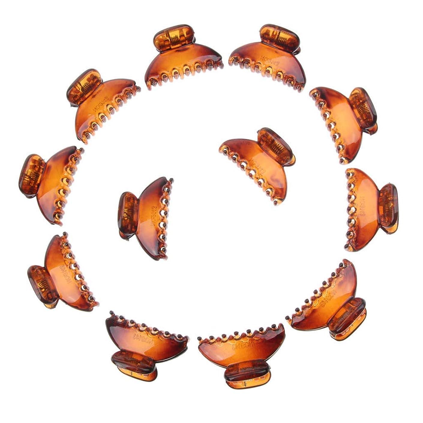 一詳細な万歳LUOSAI レディースアクリルミニ小型ブルドッグヘアクリップ爪クランプヘアアクセサリー - 12個入りのブラウンパック