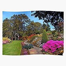 VANNINH Abkhazi Canada Garden Flower Victoria Bc Gift for Home Decor Wall Art Print