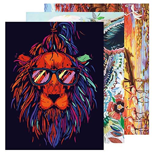 GOLDGE 3pcs Pintar por Numeros para Adultos y Niños(40*50CM), DIY Pintura al óleo Pintar por Numeros Kits Juegos de Pintura por Números (Sin Marco)