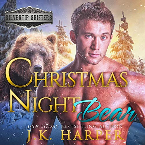 Couverture de Christmas Night Bear