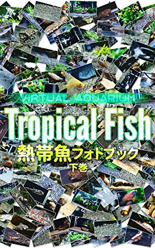 Tropical Fish Photo Collection: Virtual Aquarium Virtual Aquarium Books (Japanese Edition)