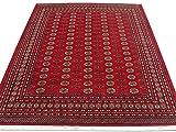 Alfombra tradicional persa hecha a mano Bokhara, lana, ladrillo de fuego, grande, 245 x 308 cm, 8 pies x 10 pies 1 pulgadas (pies)