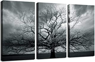 sechars - Tree Canvas Wall Art Winter Large Lonely Tree Landscape Picture Photography Print on Canvas Modern Living Room Wall Paintings Gray Wall Decor Stretched and Framed Ready to Hang