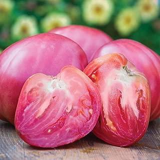 Burpee 'Hungarian Heart' Heirloom   Pink Beefsteak Slicing Tomato   35 Seeds