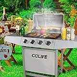 CCLIFE Barbecue à gaz BBQ gaz (Barbecue Compact 2/3/4/5/6 brûleurs), Couleur:Argent, Size:4 Brûleurs