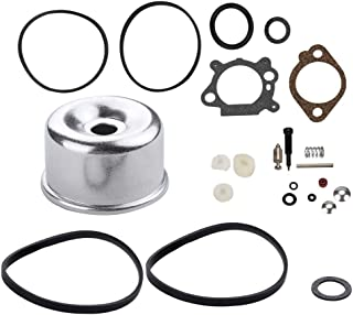 Leopop 498260 Carburetor Float Bowl Gasket for Briggs and Stratton 796611 493762 493640 398191 492495 20-141-1 20-141 Lawn Mower Overhaul Kit w Seal O Ring Gasket