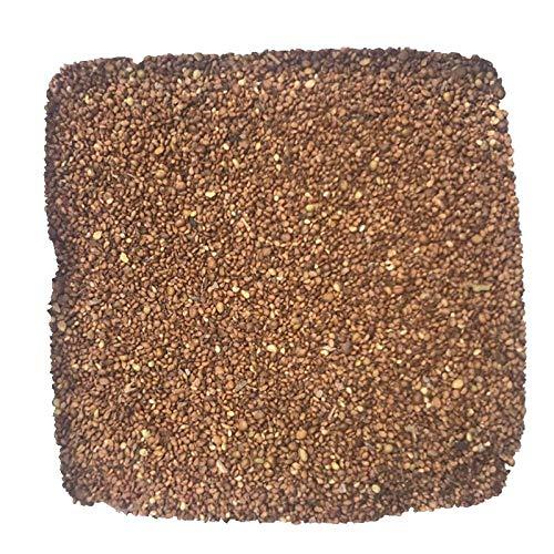 Semillas de potentilla, pasto de sapo, flores perennes de cobertura del suelo tolerantes a la sombra 300 granos