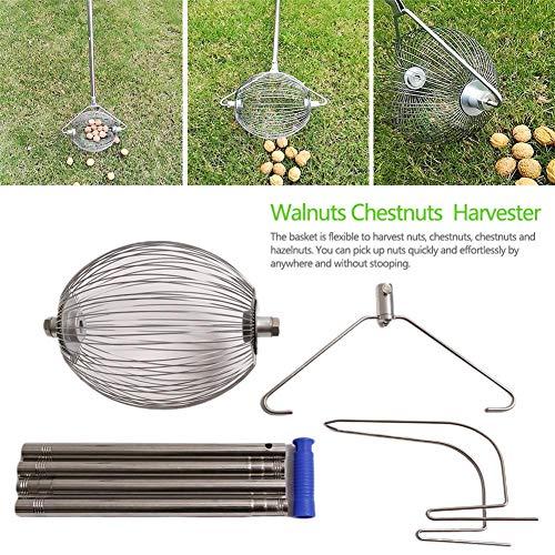 Nueces Castañas Cosechadora Tuerca Recogedor Recogedor de bolas Cosechadora de rodillos para jardín Recogedor de frutas con mango telescópico de aleación de aluminio para recoger nueces Bellotas