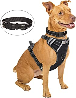 Best dog harness with collar Reviews