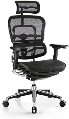 Furniture in Ergohuman Office Chair with headrest, Black
