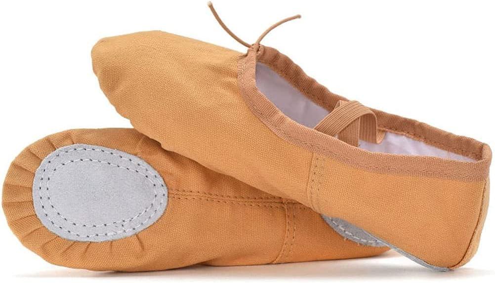 PINGZG Ballet Shoes Kids Ballet Canvas Dance Shoes for Women Gir