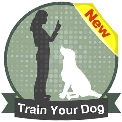 How To Teach a Dog ?