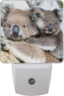 Naanle Set of 2 Baby Koala Bear and Mom On Tree Auto Sensor LED Dusk to Dawn Night Light Plug in Indoor for Adults