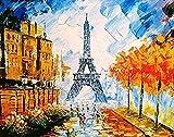 TYLPP Pintura al óleo por figuras Pintura al óleo por números, paisajes parisinos por números, menos cuadros digitales sobre lienzo 40,6 x 50,8 cm (sin marco)