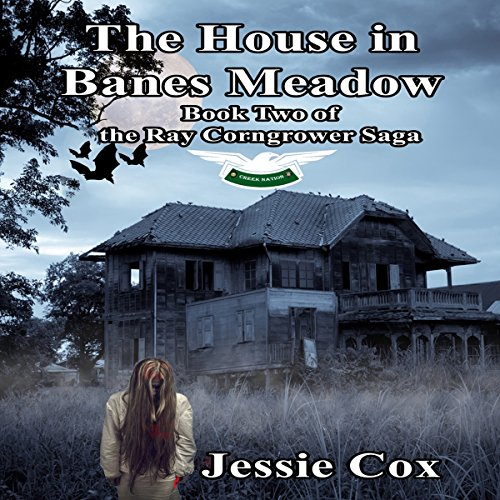 The House in Banes Meadow audiobook cover art