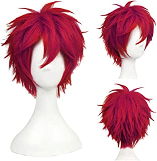 Another Me Women Men's Layered Short Straight Wig Dark Wine Red Hair Heat Resistant Fiber Wig Party Cosplay Accessories Naruto One Piece