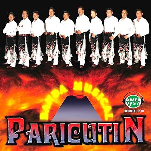 Banda Paricutin De Michoacan