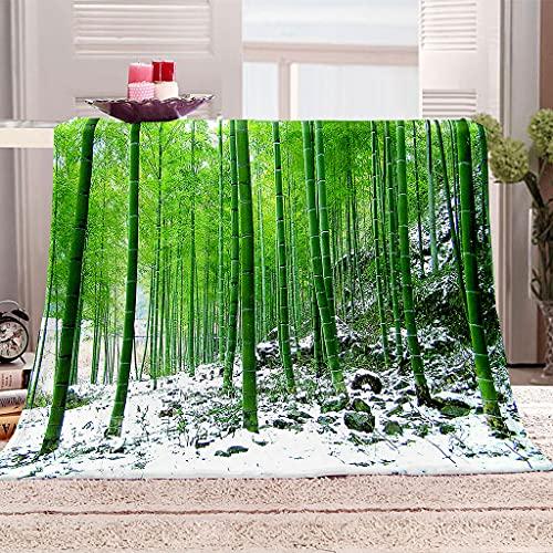 HYZSM Pleid Coperte Pile in Pelliccia Molto Morbida con 3D Stampa Foresta di Bamboo,Ottimo Rapporto Plaid Coperta per Pisolini Pomeridiani e Divano/Campeggio/Giardino/All'aerto 150x200cm