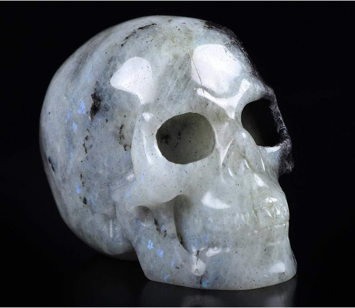 "Skullis 2.0"" Labradorite Crystal Gemston Carved Charlotte Mall Our shop most popular Hand Skull"