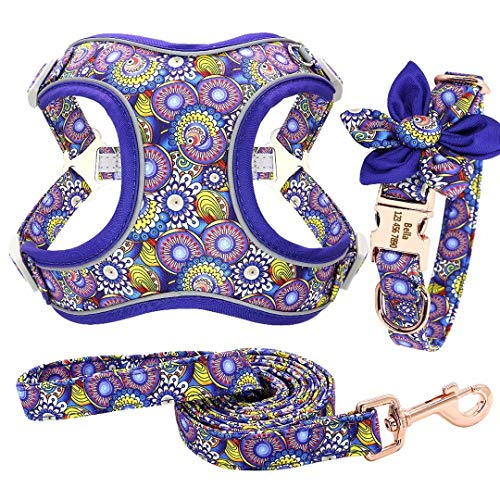 Forestpaw Multi-Colored Dog Harness and Leash Set,Step in Reflective Vest Harness, Personalized Dog Collar and Harness for Small,Medium,Large,French Bulldog,Labrador,Beagles,Samoyed,PeacockBlue,S