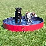 FrontPet Foldable Extra Large Dog Pet Pool Bathing Tub (60 Inch X 12 Inch)