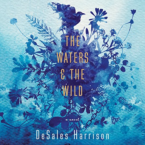 The Waters & the Wild audiobook cover art