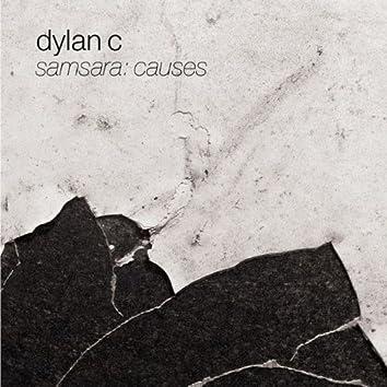 Samsara: Causes