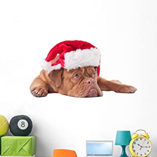 Wallmonkeys WM359664 Dog Dressed Like Santa Wall Decal Peel and Stick Graphic (48 in W x 32 in H)