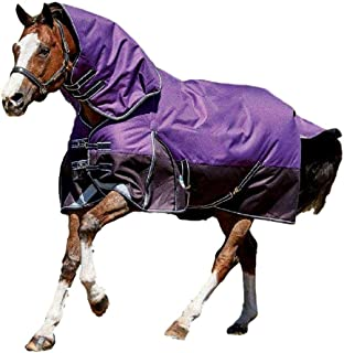 draft horse blankets