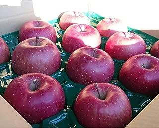 青森県産 贈答用りんご5kg サンふじ ギフト