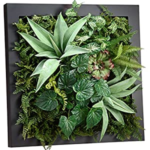 SilksAreForever 24″ Hx24 W Hanging Agave, Fern & Succulent Artificial Plant w/Wall Frame -Green