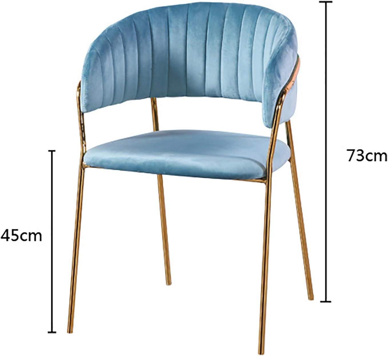 QWF Accueil Chaise de Salle à Manger Chaise Longue de Luxe légère Chaise de Maquillage avec Dossier d'accoudoir en Flanelle Douce C