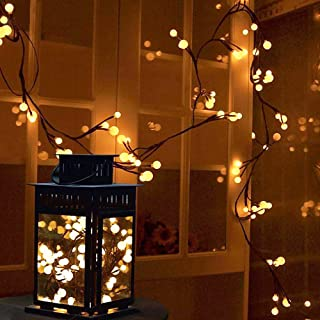 YMing Christmas Lights Indoor Outdoor, 8.3Ft 8 Modes 72 Led Globe String Lights Plug in, Decoration for Patio Garden Wedding Party Bookshelf, Warm White