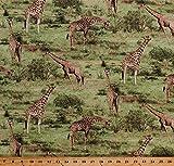 Cotton Giraffes Giraffe Animals Nature Wildlife Africa African Safari Savanna Grasslands Trees Born Free Scenic Green Cotton Fabric Print by The Yard (112-31921)