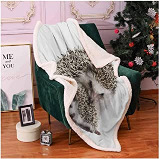 Hedgehog Soft Blankets for Adults Atelerix Albiventris Photography with Mother and Children Love and Family Theme Sherpa Comforter Brown Ivory 60